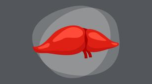 2-perbedaan-hepatitis-dan-sirosis-hati-halodoc