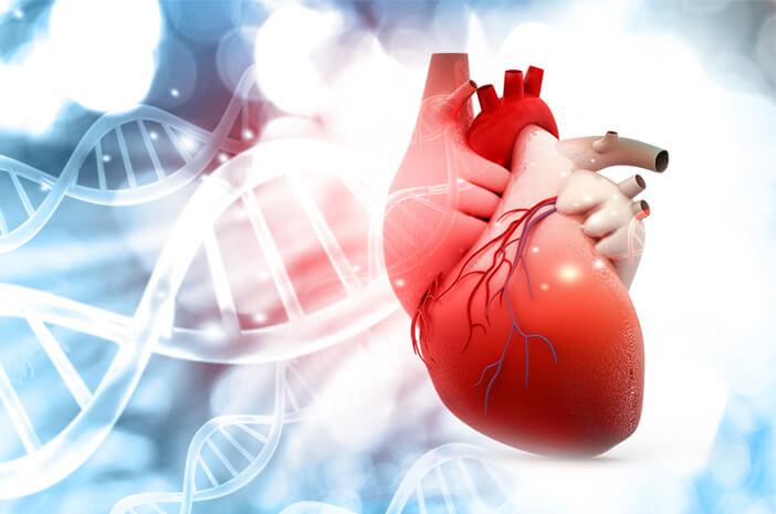 7 Faktor Risiko Jantung Berdetak Sangat Cepat