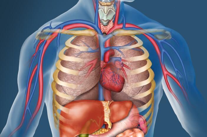 Pneumonia Bisa Akibatkan Efusi Pleura, Ini Alasannya