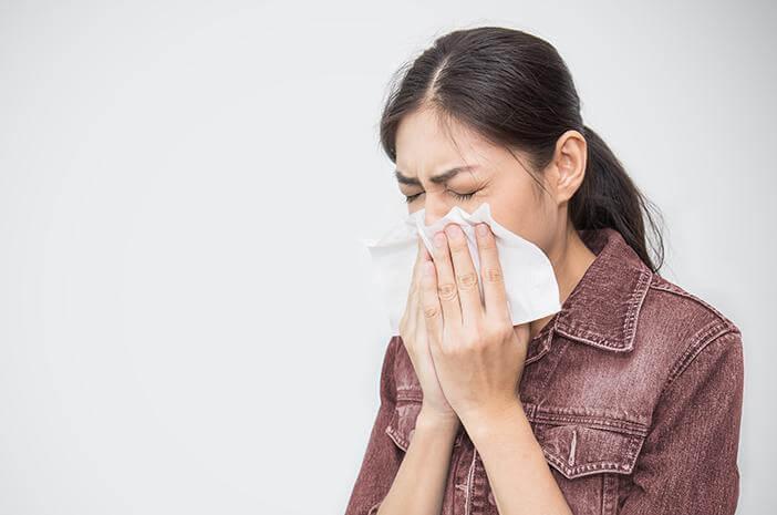 flu babi, virus flu babi, hewan babi,