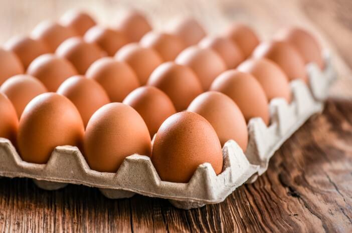 Alergi Telur adalah Penyakit Turunan, Benarkah?