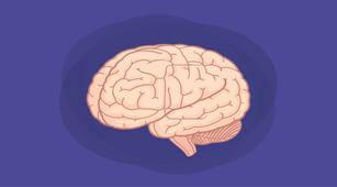 Apa yang Meningkatkan Risiko Terjadinya Encephalomalacia?