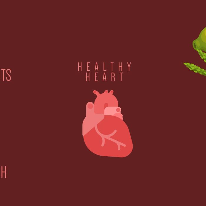 Konsumsi 7 Makanan Ini untuk Jantung Sehat