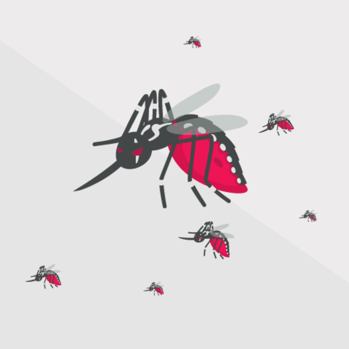 virus zika, mencegah virus zika, mengatasi virus zika