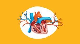 Awas, Komplikasi Penyakit yang Diakibatkan Miokarditis