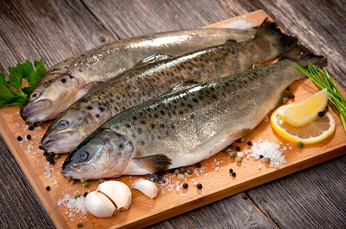 Bahaya Ikan yang Keracunan Merkuri Jika Dikonsumsi