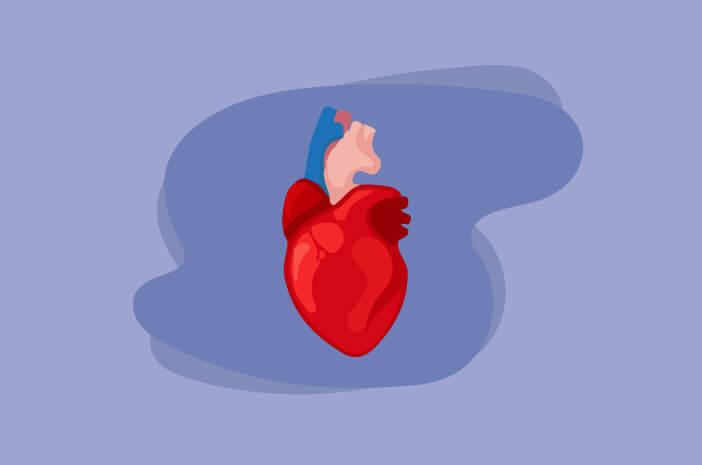 Begini Keadaan Jantung Orang yang Berpuasa