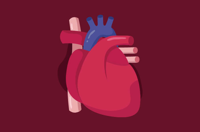 Benarkah Penyakit Jantung Koroner Tidak Dapat Disembuhkan?