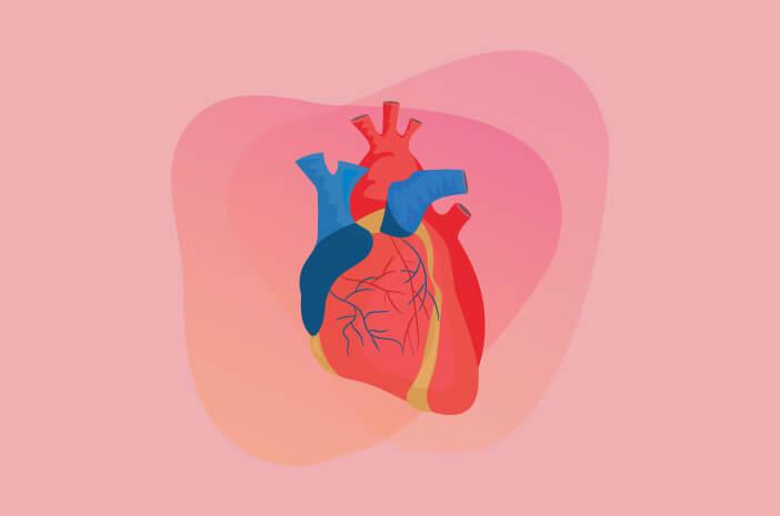 Bolehkah Pengidap Penyakit Jantung Puasa?