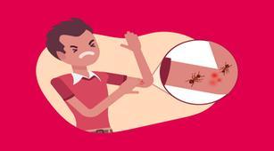 Cara Ampuh untuk Mengatasi Gigitan Semut Api