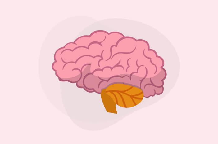 Cedera Otak Dapat Sebabkan Ensefalopati, Ini Alasannya