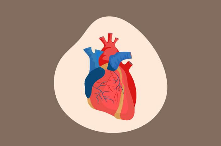 Cegah Tamponade Jantung dengan Beberapa Cara Ini
