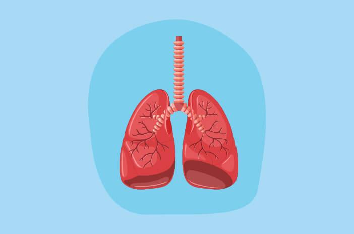 Gejala yang Dirasakan saat Terkena Pneumonia