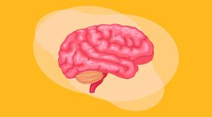 Hal yang Terjadi ketika Tubuh Kelebihan Dopamin