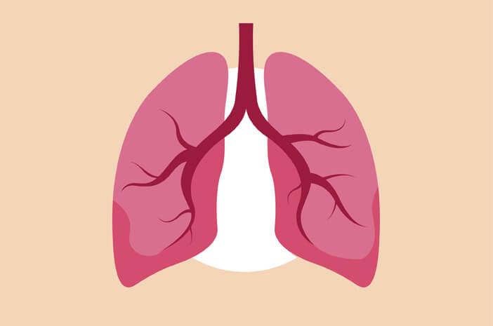 Idap Fibrosis Paru, Perlukah Transplantasi Paru?