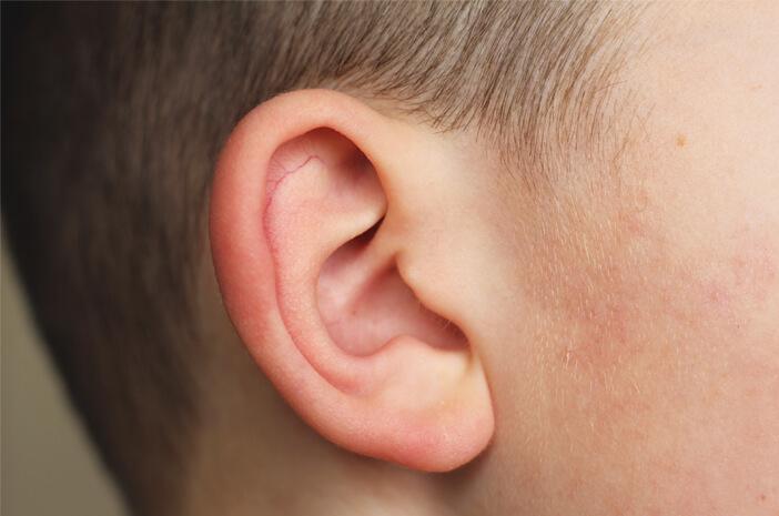 Infeksi Telinga Tak Kunjung Sembuh Sebabkan Kerusakan Otak