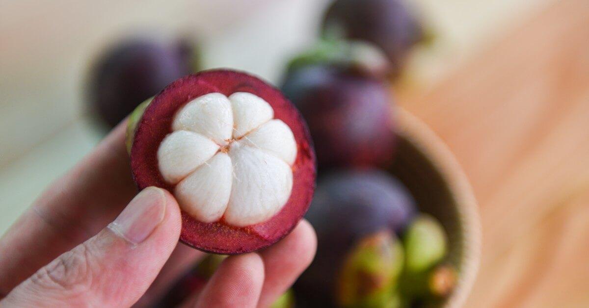 Ini 5 Khasiat Kulit Manggis yang untuk Kesehatan