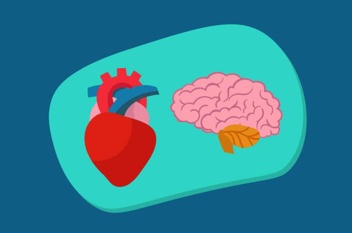 Inilah Cara Melakukan Kateterisasi Jantung