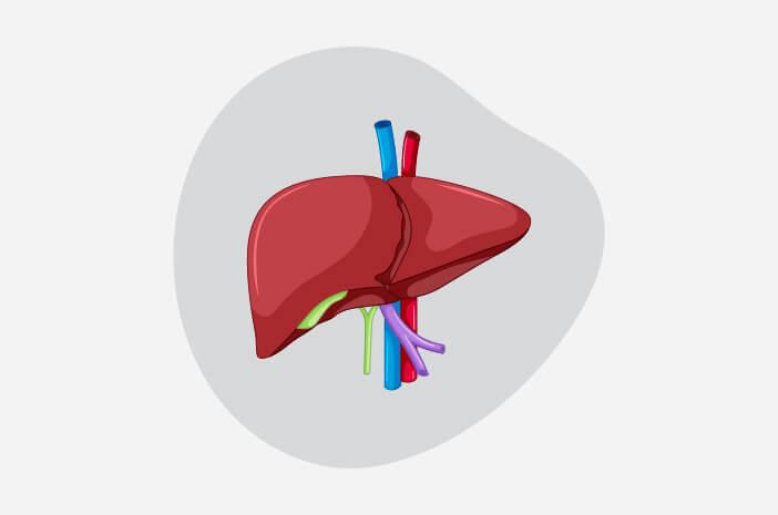 Kenalan dengan 2 Jenis Hepatitis B
