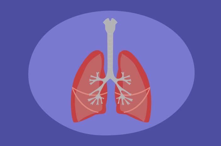 Pneumonia, paru-paru