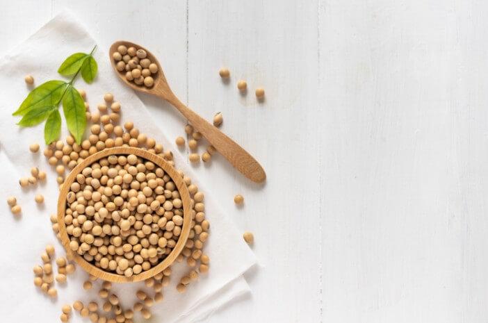 Manfaat Kacang Kedelai untuk Kesehatan Anak