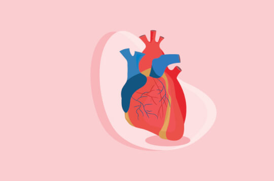 Mengidap Syok Kardiogenik, Ini yang Terjadi pada Tubuh