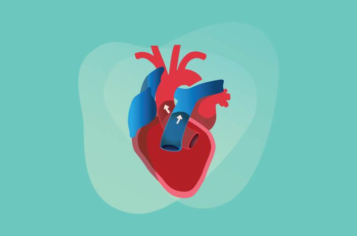 Pengidap Penyakit Katup Jantung Bisakah Sembuh Total?