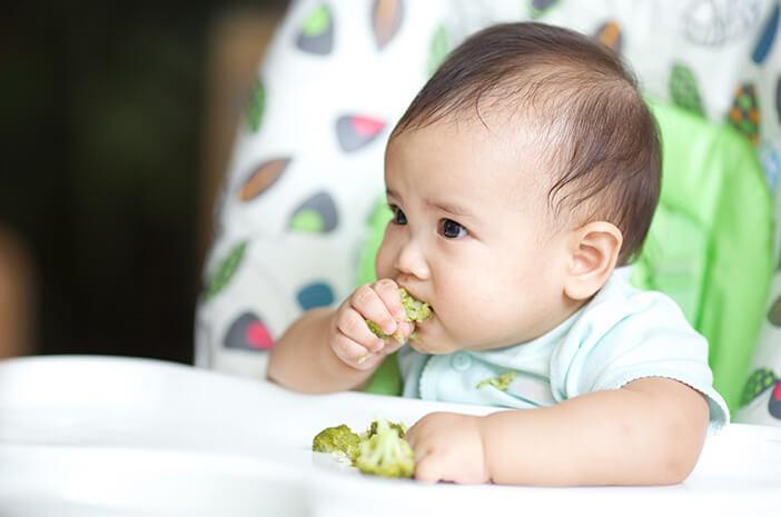 Perkembangan Bayi 15 Bulan