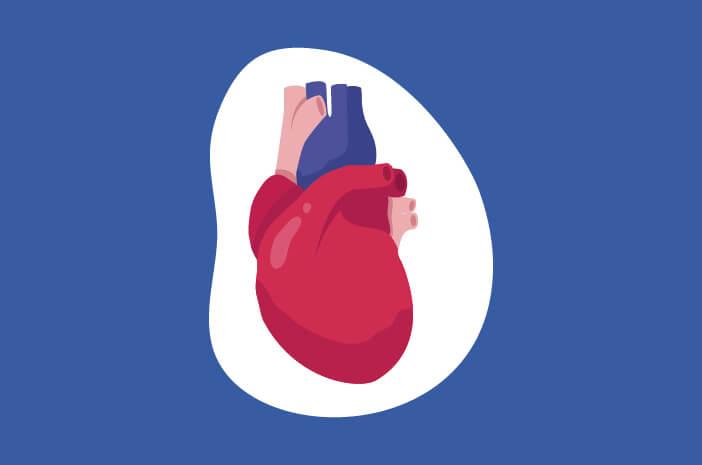 Gagal Jantung Kongestif, gagal jantung