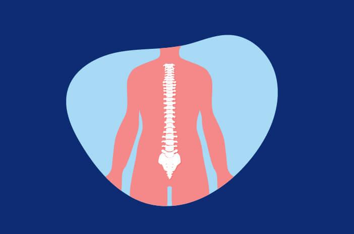 Transplantasi Sumsum Tulang Belakang untuk Kanker Darah Sulit?