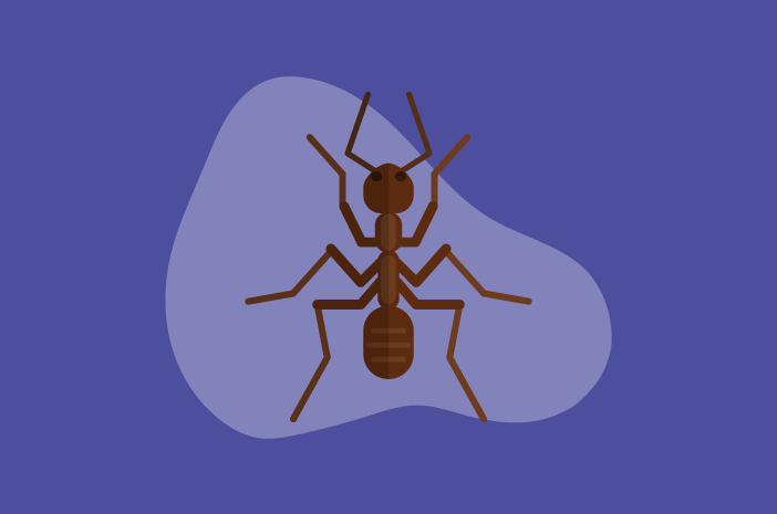 gigitan serangga