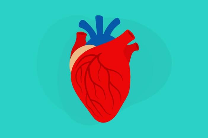 Mengapa Gangguan Jantung Bisa Menimbulkan Penyakit Lain?