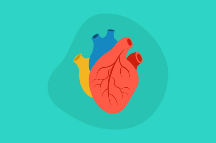 2 Tipe Penyakit Katup Jantung yang Perlu Diketahui