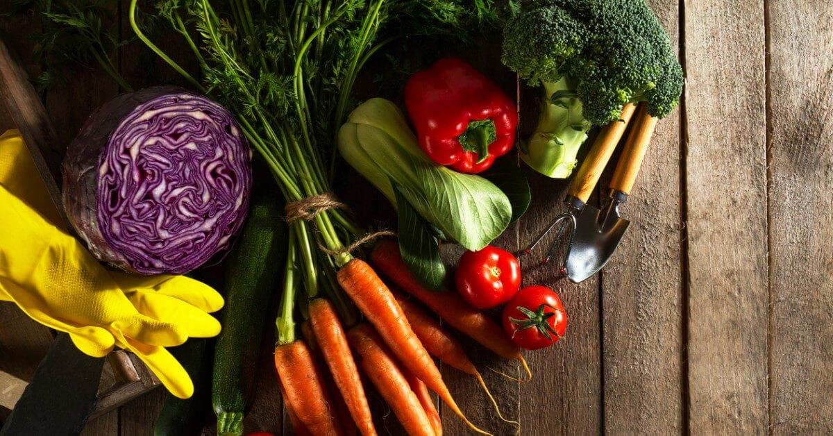 11 Makanan yang Wajib Dikonsumsi untuk Mencegah Osteomalasia